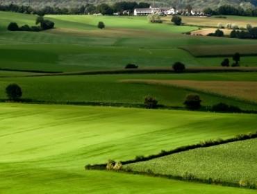 Đất nông nghiệp là gì? Có Thể Chuyển Thành Đất Ở Được Không