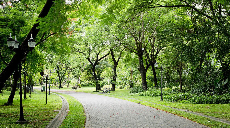 công viên cây xanh căn hộ Masteri Thảo Điền