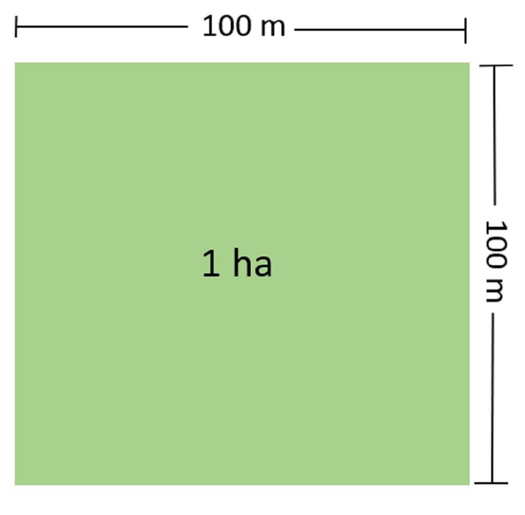 1 hecta bang bao nhieu m2